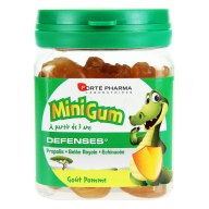 minigum-defenses-enfant-z